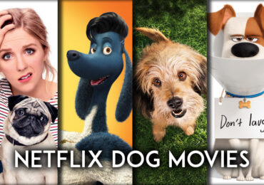 Best Dog Movies on Netflix for Dog Lovers